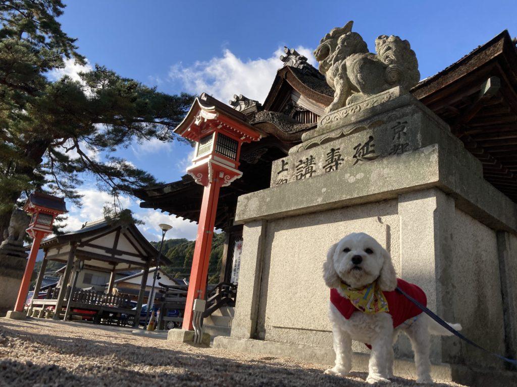 白髭神社 狛犬